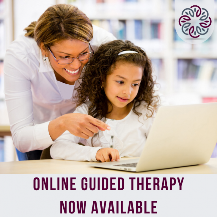 Online Guided Therapy