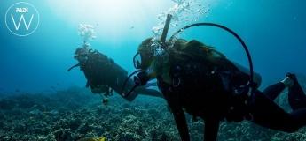 PADI Woman's Dive Day