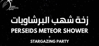 Perseids Metero Shower