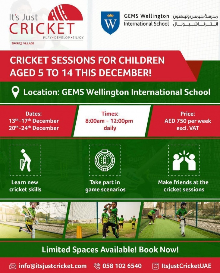 Cricket Winter Holiday Sessions