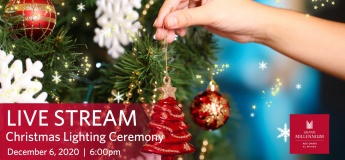 Christmas Lighting Ceremony - Live Stream