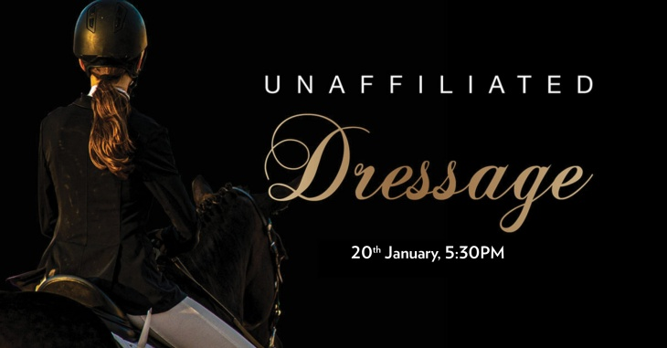 Dressage Show at Al Habtoor Polo Resort and Club