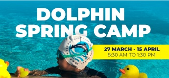 Dolphin Spring Camp