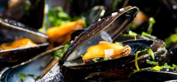 Unlimited Moules Frites Monday @ Couqley French Bistro