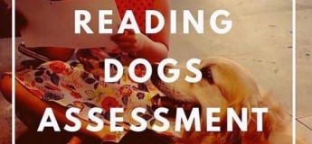 Reading Dogs Assessment Day