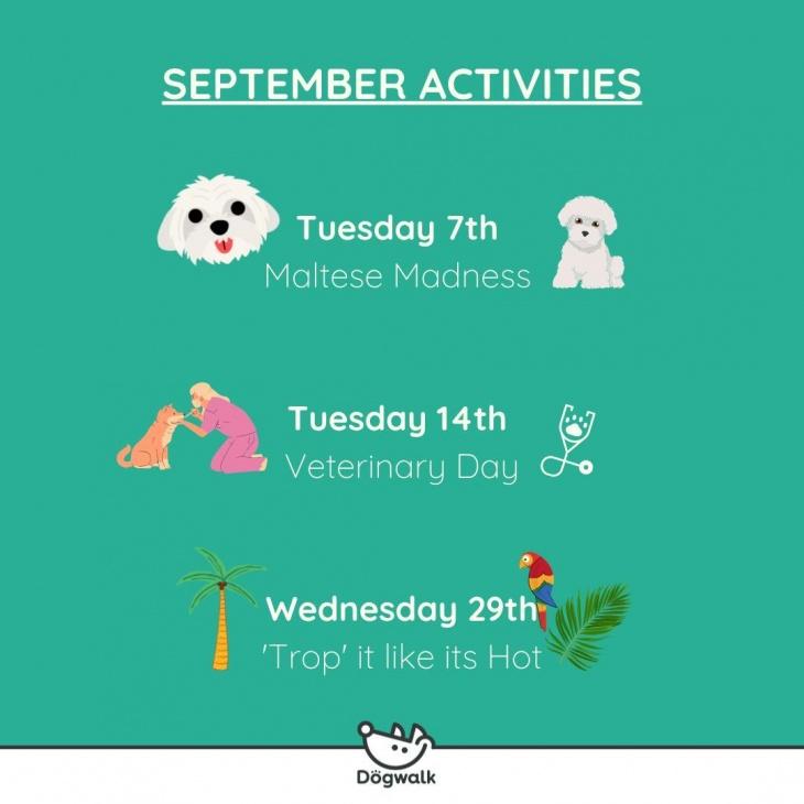 Dogwalk's September Activities