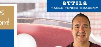Table Tennis Open Days