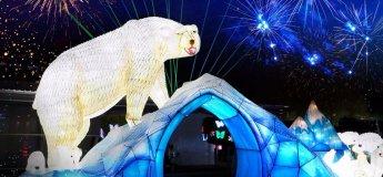 Ice Park in Dubai Garden Glow