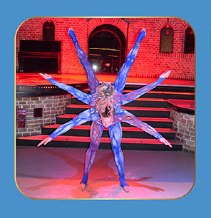 Mercato's circus fiesta: Cirque de Mercato
