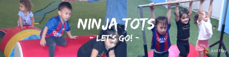 Ninja Tots
