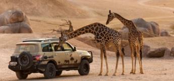 Al Ain private SUV tours
