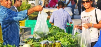 Organic Souk @ Dubai Festival City