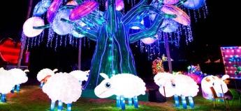 The Glow Park @ Dubai Garden Glow