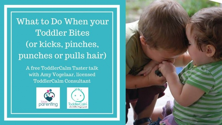 What to do when your Toddler Bites