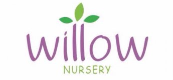 Willow Nursery