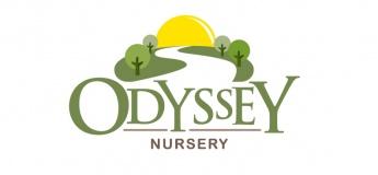 Odyssey  Nursery - Abu Dhabi